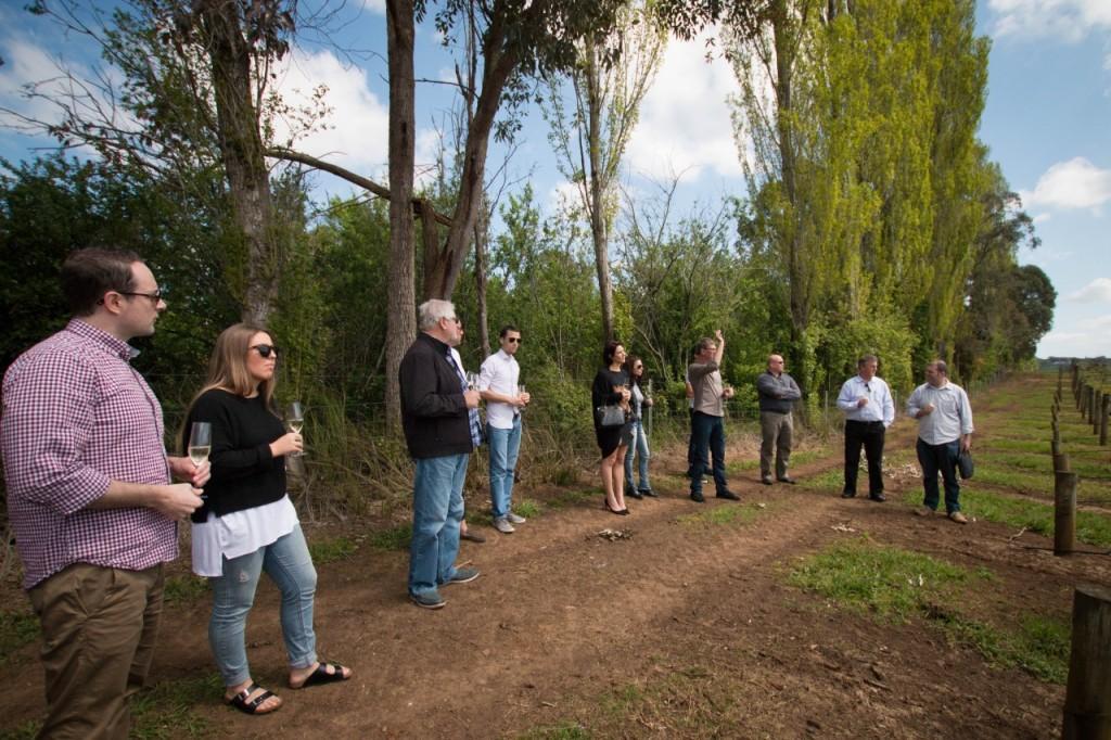 dws-seville_estate-winery-visit-12
