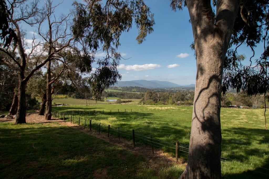 dws-seville_estate-winery-visit-37