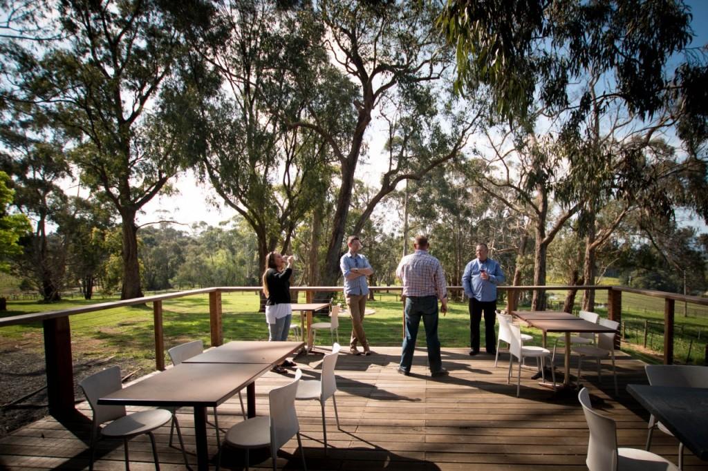 dws-seville_estate-winery-visit-43