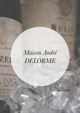 Header-Andre DELORME