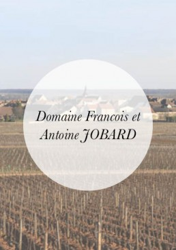 Header-IMP-Francois et Antoine JOBARD
