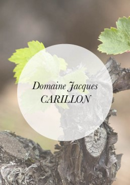 Header-Jacques CARILLON